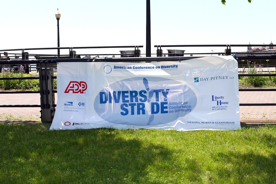 DIversity Stride banner